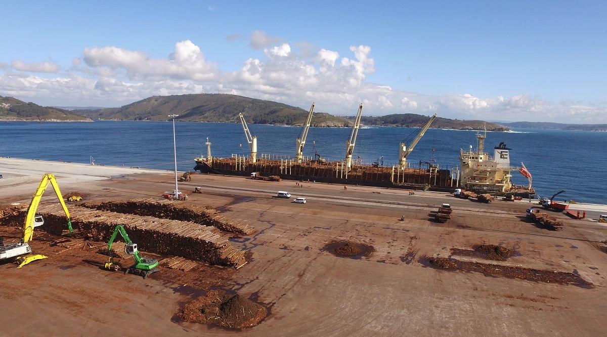 Puerto de Ferrol   Embarque de pino