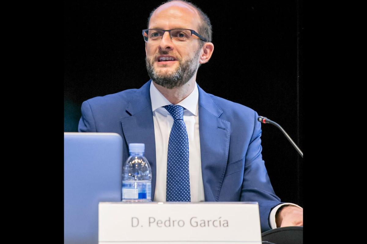Anesco   Pedro Garcia Navarro