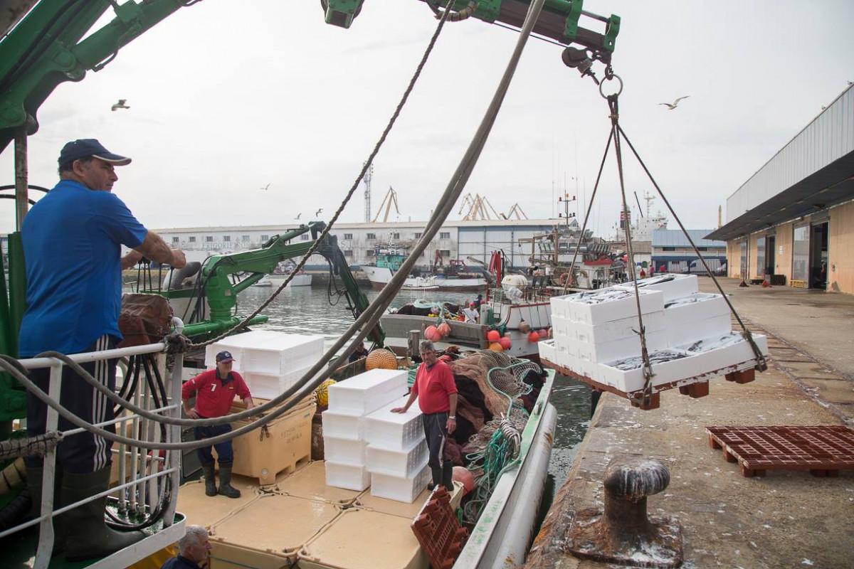 Puerto de Cu00e1diz   Lonja