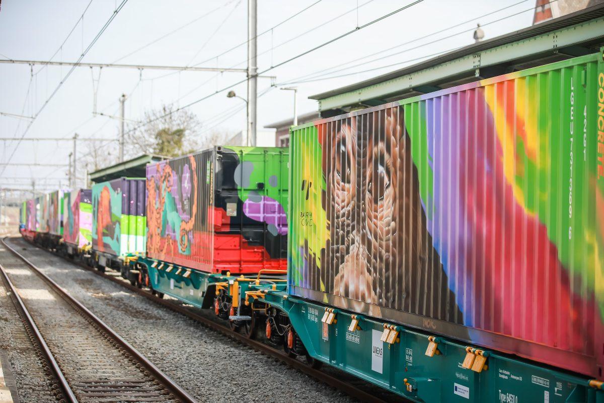 Renfe   Tren de Nou00e9
